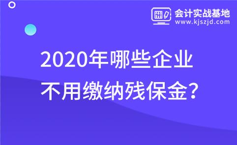 2020年哪些企业不用缴纳残保金?